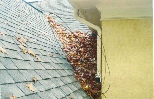 Lack Of Roof Maintenance Problem With Leaves